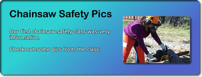 Chainsaw Safety Pics